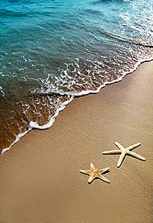 Vacanta pe plaja